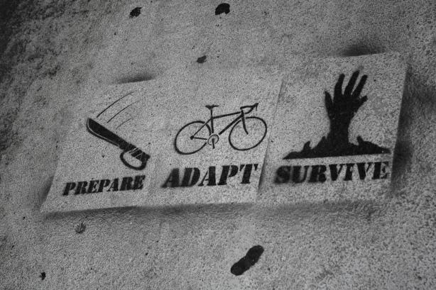 reinventarse: lecciones de dos supervivientes analógicos